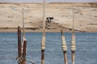Salzstangen am Toten Meer / Israel