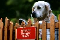 Vorsicht bissiger Hund!